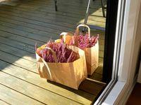 Flowers in Bags