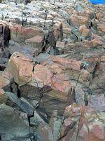 Nasty Beautiful Rocks